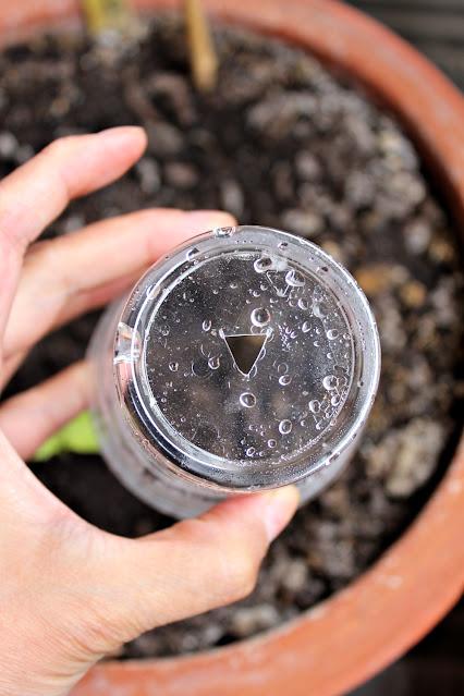 Skjær en trekant i bunnen av glasset