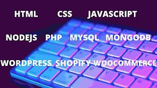 I will do web designing and development