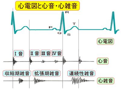 Study note: 心音について