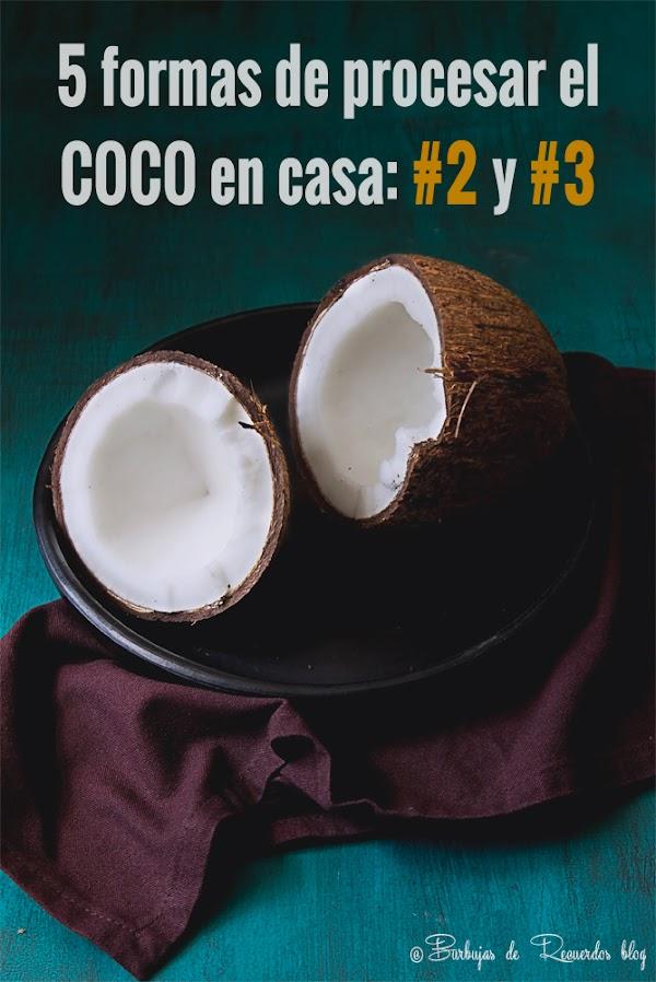 5 formas de procesar el coco en casa: leche y harina de coco
