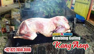 Kambing Guling Pasteur Bandung,kambing guling pasteur,kambing guling bandung,kambing guling,kambing bandung,
