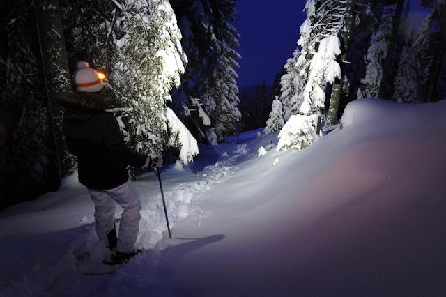 Nočni sprehod s krpljami, Golte, Slovenija