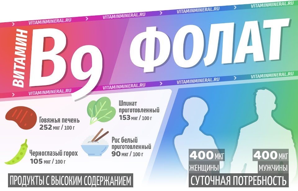 Фолат для организма — инфографика