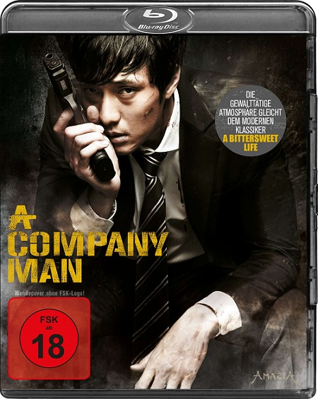 A Company Man 2012 720p HEVC BluRay Dual Audio Hindi 500MB