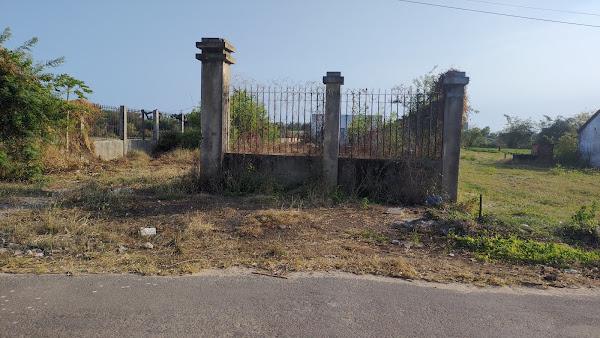 chính chủ cần bán đất Hồ Tràm vũng tàu diện tích 1391m2 , sau lưng nhà thờ Hồ Tràm