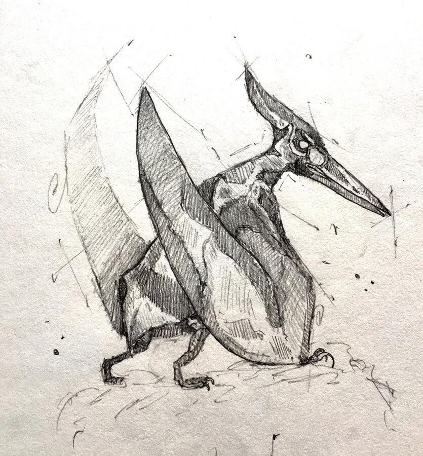 01-Pteranodon-Dinosaur-Brendan-www-designstack-co