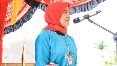 Mahyeldi Dukung Pemajuan Kebudayaan Koto Gadang Koto Anau untuk Jadi Destinasi Wisata Dunia