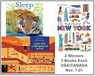 My First Big Book of New York Sleep: How Nature Gets Its Rest, Walk This Underground World