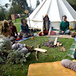 Permaculture, Wildfoods and Herbal Wisdom      : Sacred Ecology - AIR Weekend