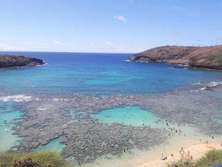 hawaiin ocean