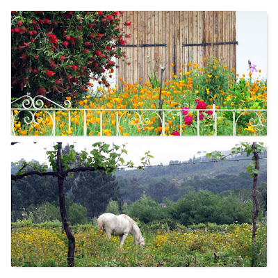 flores e cavalo num campo florido