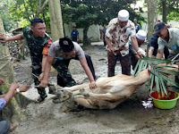 Dalam Suasana Idul Adha 1440 H, Babinsa Koramil 15/BPL Bantu Masyarakat sembelih Kurban