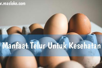 Inilah 5 Manfaat Telur Untuk Kesehatan, Kamu Wajib Tahu!