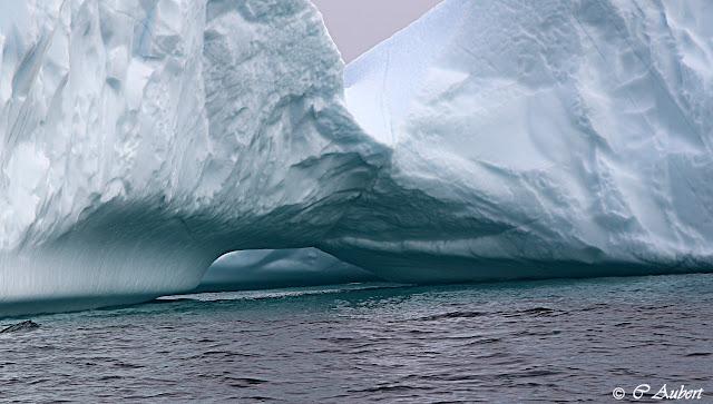 Iceberg, Savissivik, Groenland