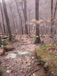 sentier du mont saint-hilaire l'automne