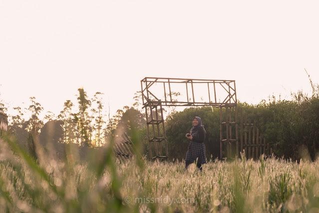 hunting sunrise di rancaupas ciwedey bandung