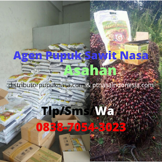 http://www.distributorpupuknasa.com/2020/02/agen-pupuk-sawit-nasa-di-asahan.html