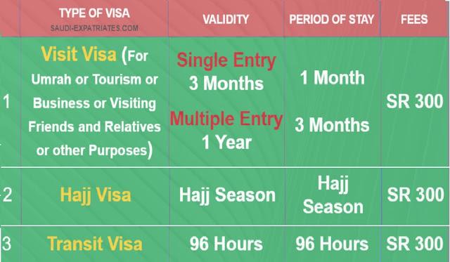 Saudi Visit Visa, Hajj Visa, Umrah Visa, Transit Visa for 300 SR