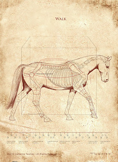 """DaVinci Walk Revealed"" print"