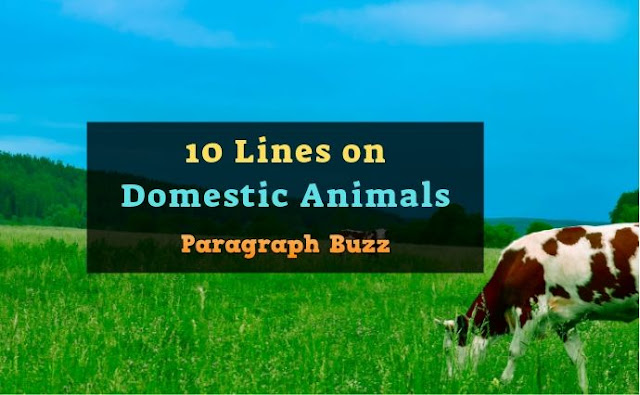 10 Lines on Domestic Animals