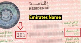 UAE VISA CODE, 101, 201, 301, 401