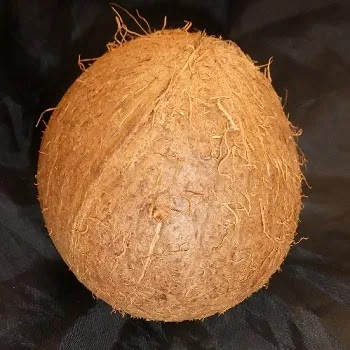 नारळ, Coconut fruits name in Marathi