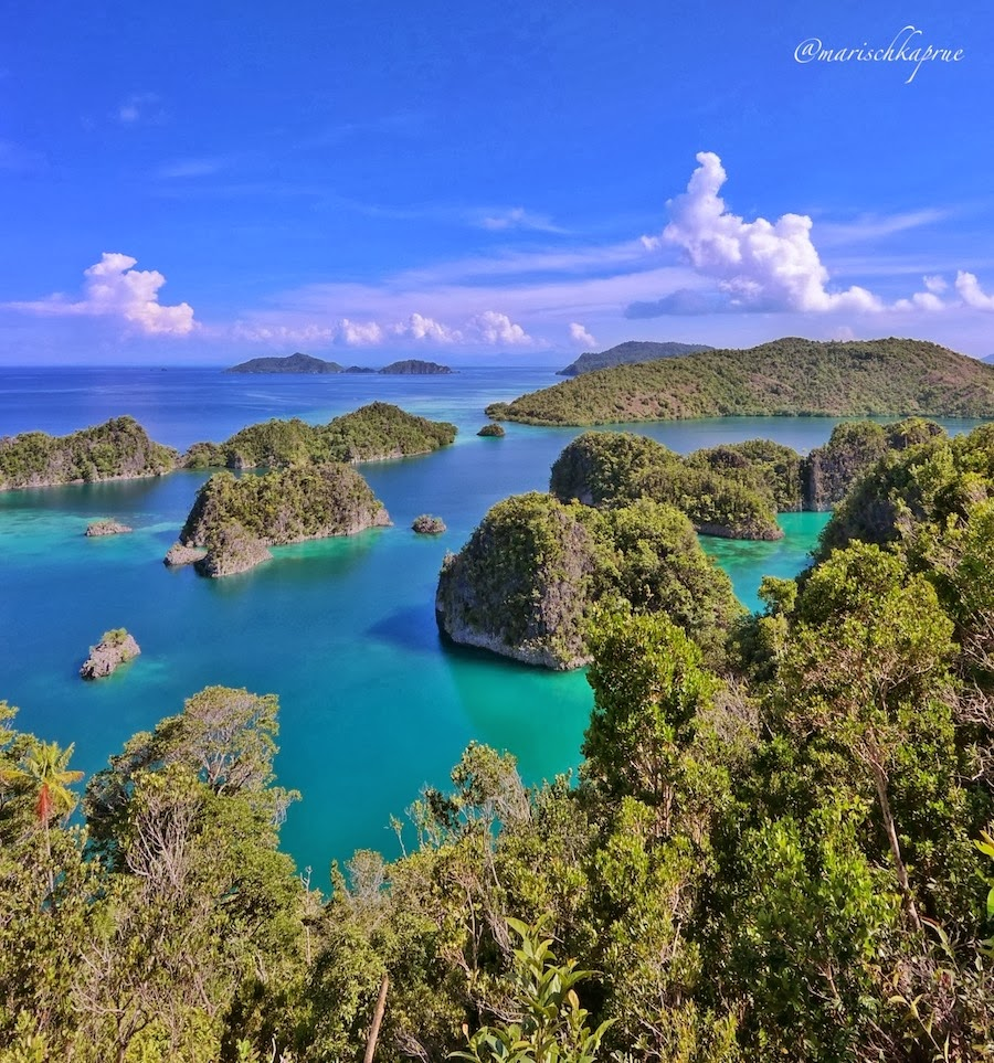 "<a href=""http://mataram.info/things-to-do-in-bali/visitindonesia-banda-marine-life-the-paradise-of-diving-topographic-point-inward-fundamental-maluku/"">Indonesia</a>best destinations : Pianemo, The Mini Wayag Inwards Raja Ampat"