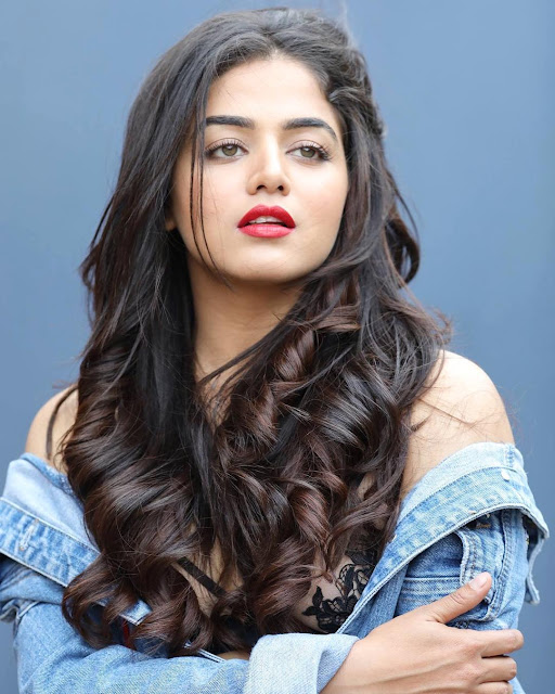 Wamiqa Gabbi (Indian Actress) Wiki, Age, Height, Family, Career, Awards, and Many More...