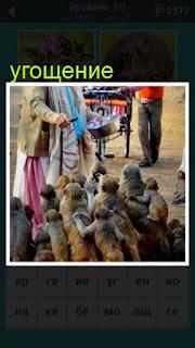 женщина из кастрюли угощает большое количество обезьян 20 уровень 667 слов
