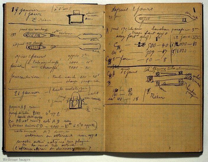 Buku catatan Marie Curie
