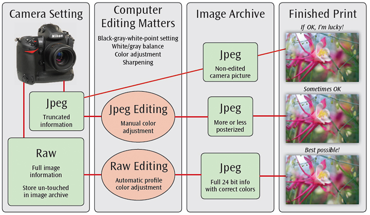 Common image formats for photography - Risphotograph