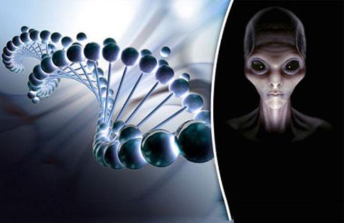 Phát hiện mới: Người ngoài hành tinh đã nuôi cấy lai tạo ra loài người