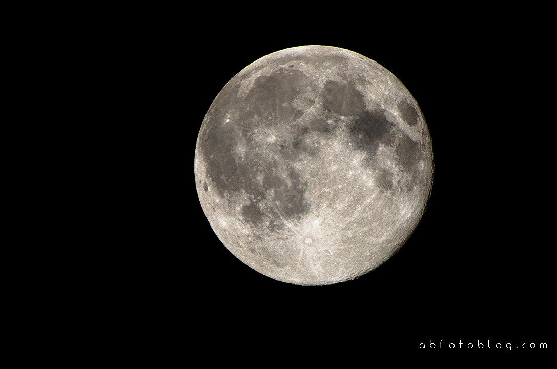 Neuland S01: Dibujo De Un Caballo Bajo La Luna