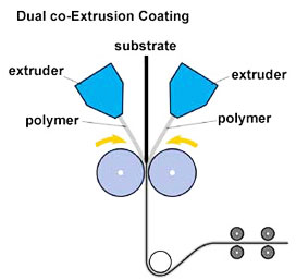 Co-extrusion