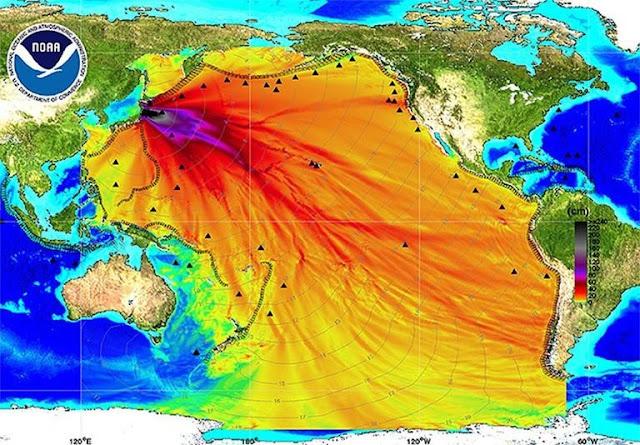 Фукусима отравила весь Тихий океан. Но вокруг катастрофы царит странный заговор молчания