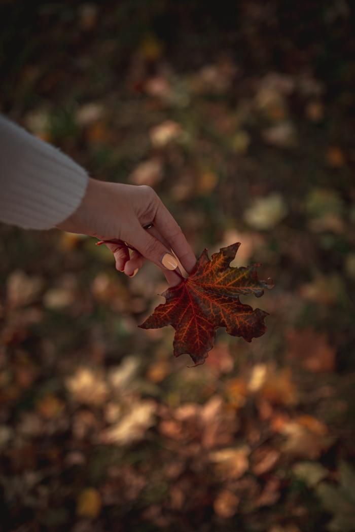 kreatywna jesień