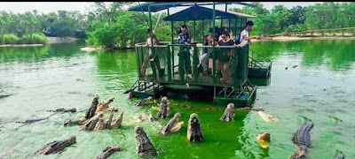 elephant_kingdom_chonburi_thailand_most_dangerous_tourist_destinations_in_the_world_most_dangerous_tourist_places_in_the_world