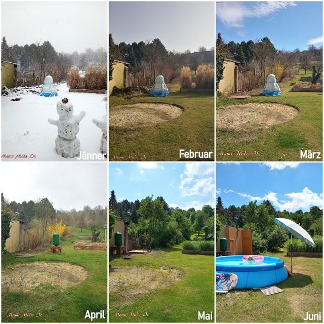 12tel Blick 2021 - Juni - Collage