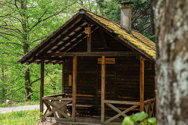 Premiumwanderweg Murgleiter | Etappe 2 von Gernsbach nach Forbach | Wandern nördlicher Schwarzwald 14