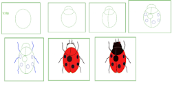 ladybug drawing draw easy simple some pastel right use