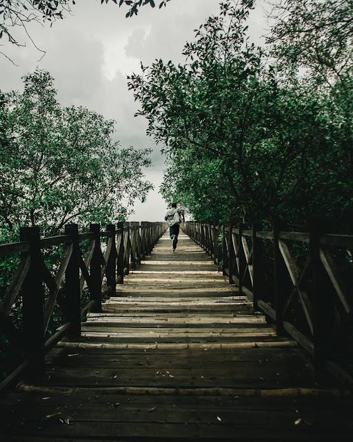 wisata probolinggo 2019