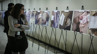أكثر من 900 ألف وثيقة حكومية تم تهريبها إلى خارج سوريا تحتوي على أدلة قوية على تورط النظام السوري