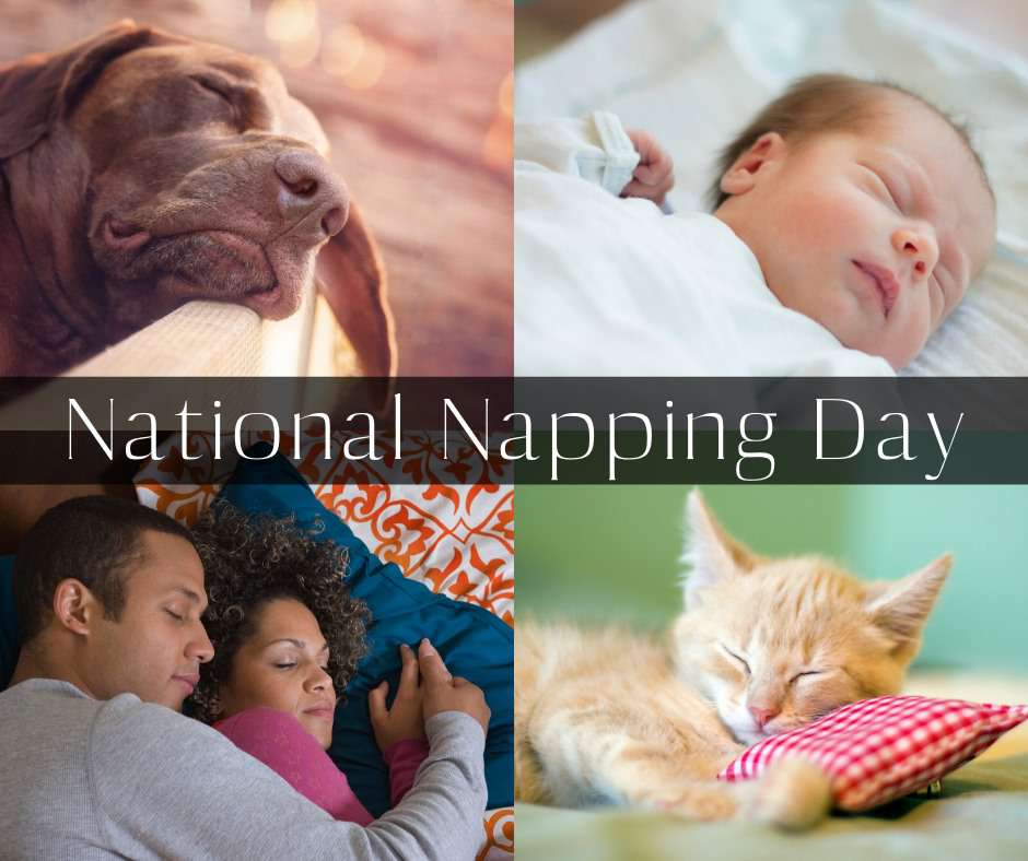 National Napping Day Wishes Lovely Pics