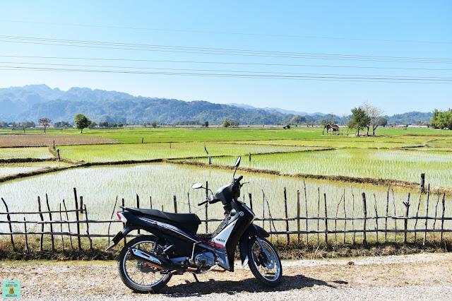 Alquiler de moto en loop de Thakhek, Laos