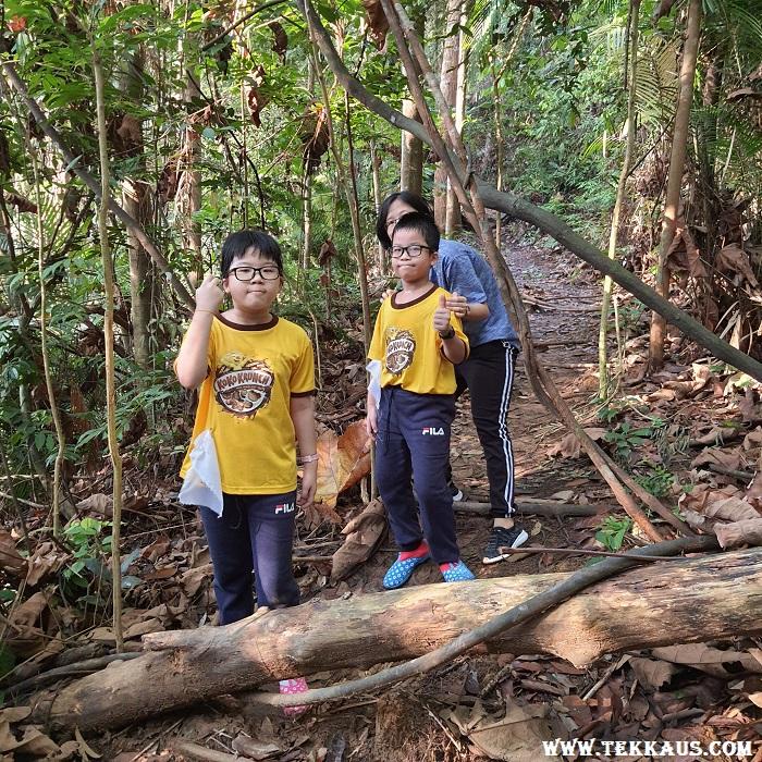 Jungle Trekking Bukit Beruang Hiking Hill