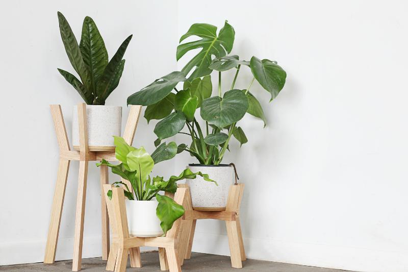 soportes para plantas la bici azul blog de decoraci n