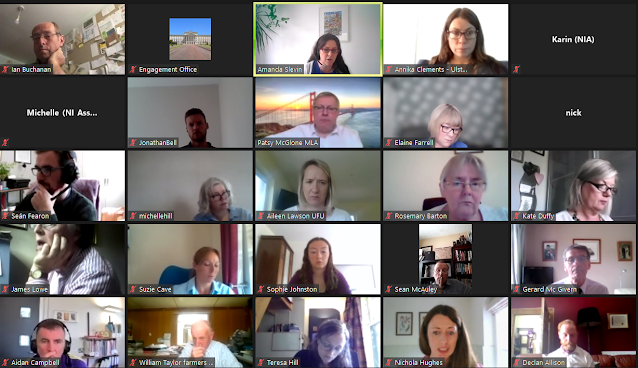 Screenshot from an MS Teams meeting there are a number of faces of people in a grid view who attended the meeting.