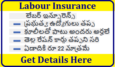 Labour Insurance and Benifits /2019/05/process-to-register-for-labour-insurance-and-its-benifits.html
