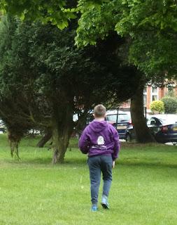 throwing breadcrumbs birds milton park portsmouth