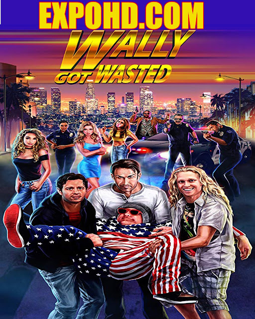Wally Got Wasted 2019 IMDb 480p | 720p | Esub 1.2Gbs [Watch & Download]